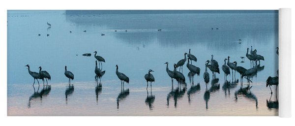 Sunrise Over The Hula Valley Israel 5 Yoga Mat