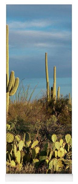 Sunset On The Saguaros Yoga Mat