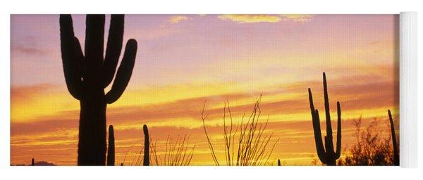 Sunset Saguaro Cactus Saguaro National Yoga Mat