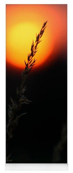 Sunset Seed Silhouette Yoga Mat