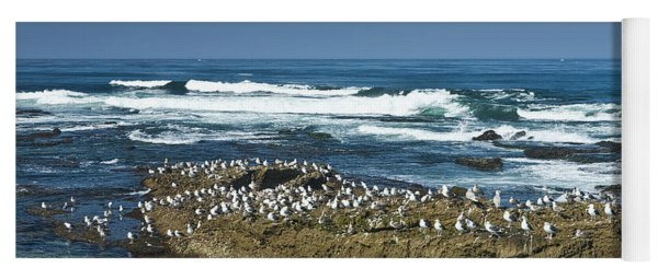 Surf Waves At La Jolla California With Gulls Perched On A Large Rock No. 0194 Yoga Mat