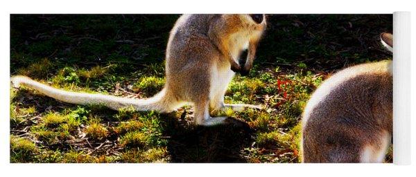 Red-necked Wallabies Yoga Mat