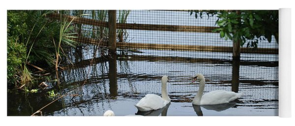 Swans In The Pond Yoga Mat