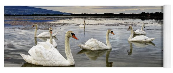 Swans Yoga Mat