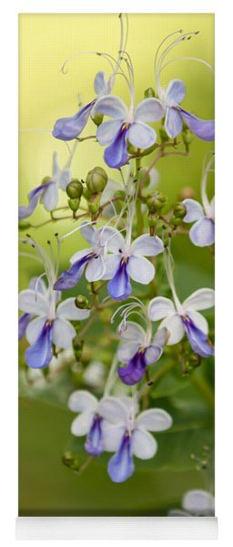 Sweet Butterfly Flowers Yoga Mat