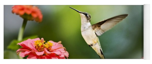 Sweet Promise Hummingbird Yoga Mat