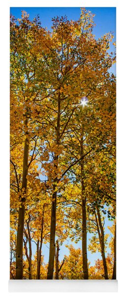 Tall Aspen With Sunstar Yoga Mat