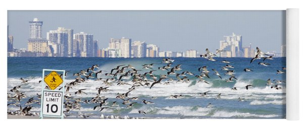 Terns On The Move Yoga Mat