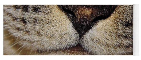 The - Cat - Nose Yoga Mat