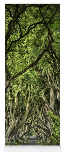 The Dark Hedges Yoga Mat