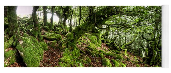 The Elven Forest No2 Wide Yoga Mat