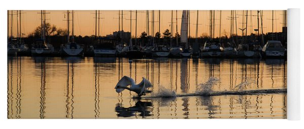 The Golden Takeoff - Swan Sunset And Yachts At A Marina In Toronto Canada Yoga Mat