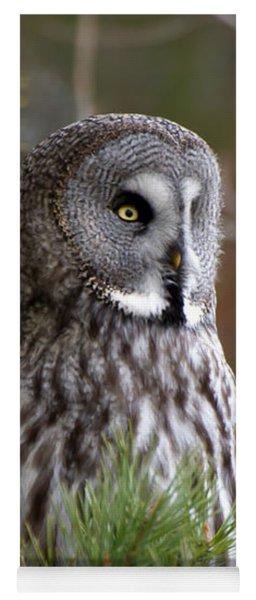 The Great Grey Owl Yoga Mat