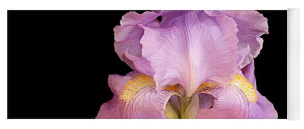 The Iris In All Her Glory Yoga Mat