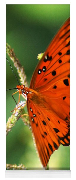 The Passion Butterfly Yoga Mat