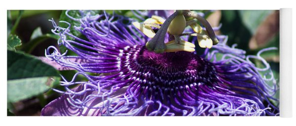 The Passion Flower Yoga Mat