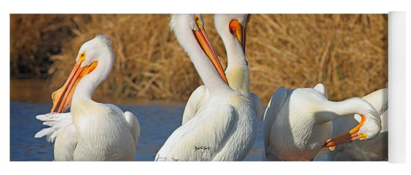 The Pelican Gang Yoga Mat
