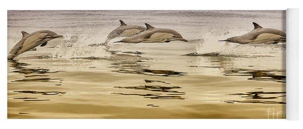 Dolphin Canvas Print, Photographic Print, Art Print, Framed Print, Greeting Card, Iphone Case, Yoga Mat