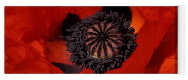 The Poppy Is Also A Flower Yoga Mat