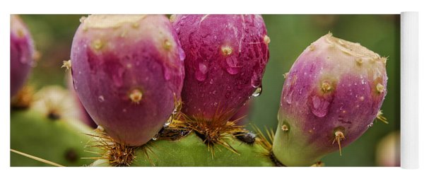 The Prickly Pear  Yoga Mat