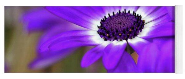 The Purple Daisy Yoga Mat