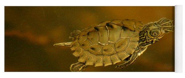 The Southeastern Map Turtle Yoga Mat
