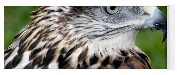 The Threat Of A Predator Hawk Yoga Mat