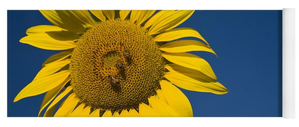 Three Bees And A Sunflower Yoga Mat