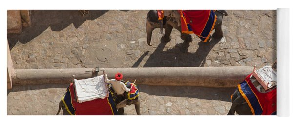 Three Elephants At Amber Fort Yoga Mat
