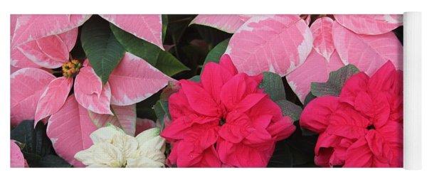 Three Pink Poinsettias Yoga Mat