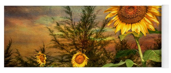 Three Sunflowers Yoga Mat