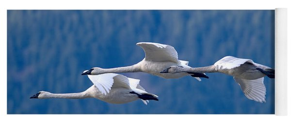 Three Swans Flying Yoga Mat