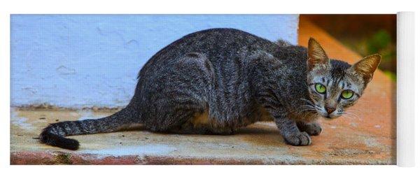 Tiger Cat With Luminous Eyes Yoga Mat