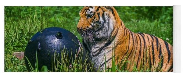 Tiger Playing With Ball Yoga Mat