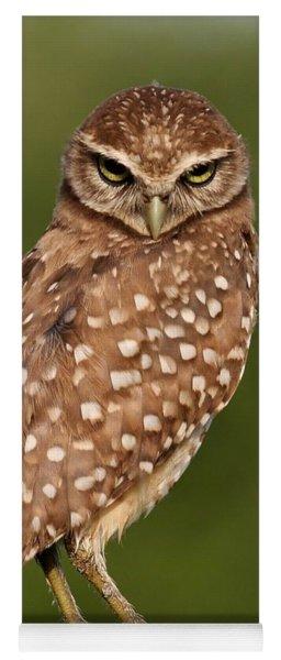 Tiny Burrowing Owl Yoga Mat