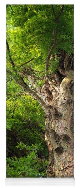 Tree Yoga Mat