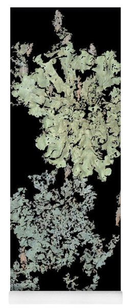 Tree Fungus Yoga Mat