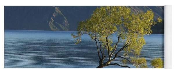 Tree In Lake Wanaka Yoga Mat
