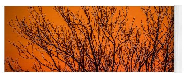 Tree Silhouetted By Irish Sunrise Yoga Mat