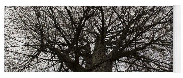 Tree Web Yoga Mat