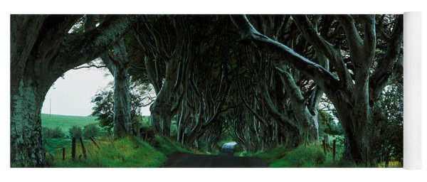 Trees At The Dark Hedges, Armoy, County Yoga Mat