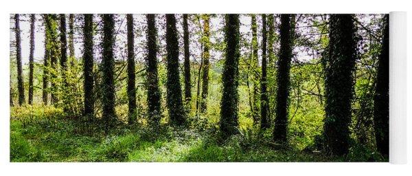 Trees On The Shannon Estuary Yoga Mat