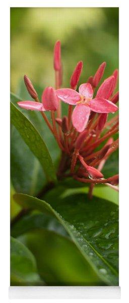 Tropical Flowers In Singapore Yoga Mat