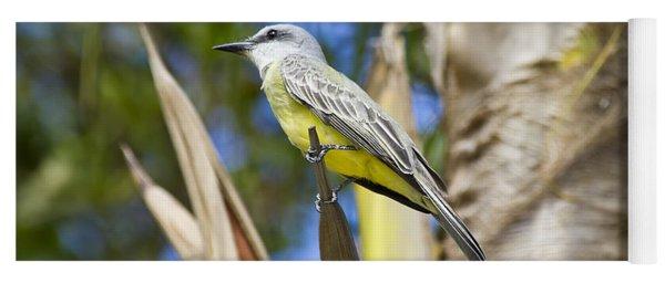 Tropical Kingbird Yoga Mat