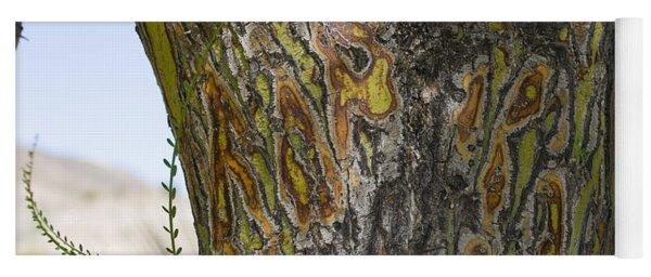 Trunk Of Palo Verde Tree, Big Bend Yoga Mat