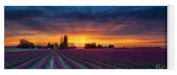Tulip Fields Dusk Skies Yoga Mat
