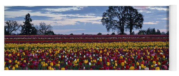 Tulip Field's Last Colors Yoga Mat