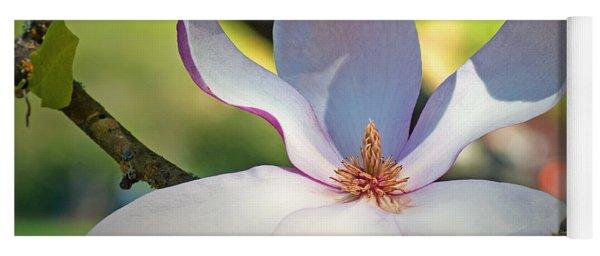 Tulip Tree Bloom Yoga Mat