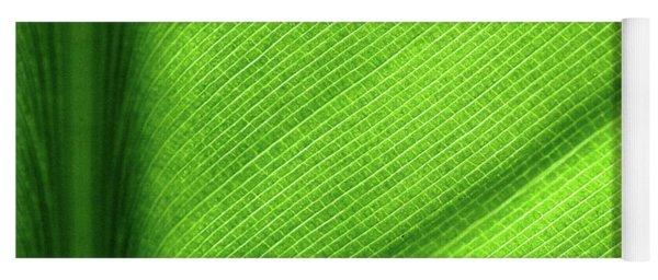 Turning A New Leaf Yoga Mat