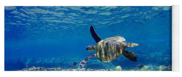 Turtle Cruise Yoga Mat
